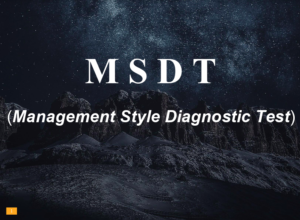 MSDT (Management Style Diagnostic Test)